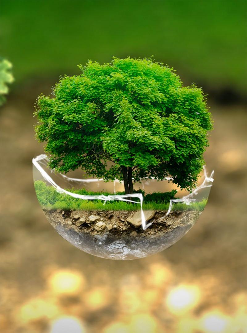 protezione-ambiente